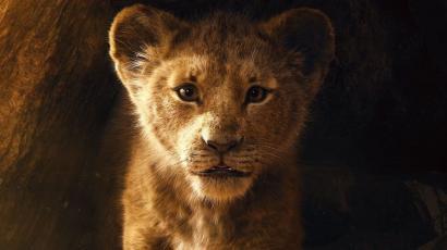 lion-king-disney