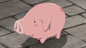 hawk pig